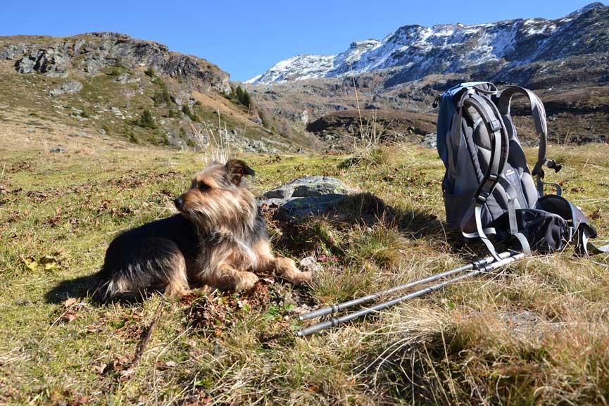 Sentier de randonnee en moyenne montagne