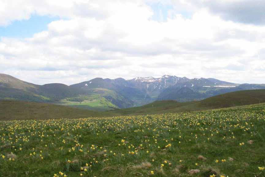 Volcan Auvergne - Site exceptionnel 100% nature